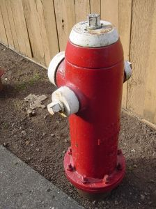 A dog joke with a fire hydrant