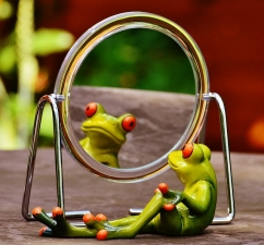 mirror frog
