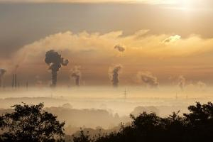 smog industry