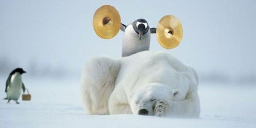 Funny Pictures of Peguin Waking Polar Bear With Symbals