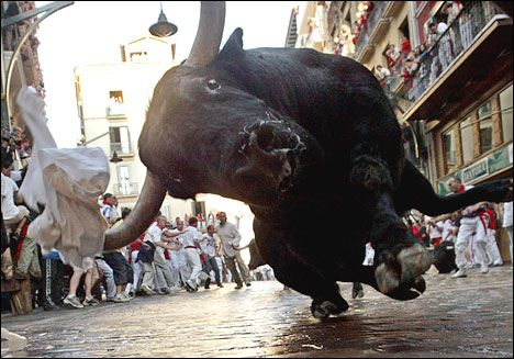 Funny Pictures of Pamplona Bull Run