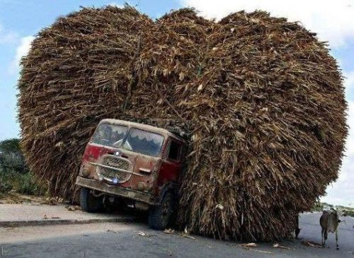 Funny Pictures of Street Sweeper Overloaded Truck
