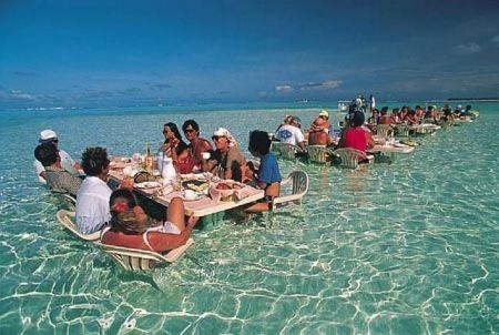 Funny Pictures of Tables in Surf