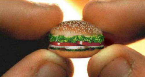 Funny Pictures of Tiny Hamburger