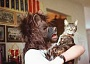 Funny Cat Pictures -  and Owner with Ugly Mask