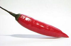 picture of a hot pepper