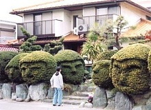 Funny Pictures of Kid Standing in Front of Bushes That Look Like Faces