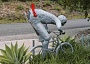 Funny Pictures of Bicycle Mailbox