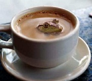 Funny Pictures of Frog in Coffee Mug