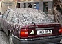 Funny Pictures of Car Covered In Bird Poop