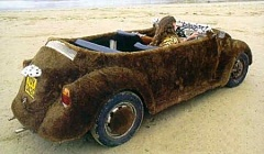 Funny Pictures of Furry Volkswagen Bug Rug