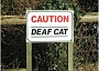 Picture of deaf cat sign