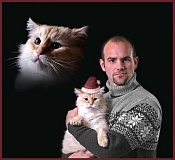A funny Christmas picture with a cat and its owner.