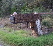 Funny Pictures of Mailbox Shaped Like Pistol