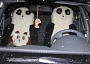 Funny Pictures of Panda Bears in Car