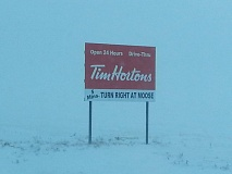 Tim Hortons Moose Coffee Funny Sign