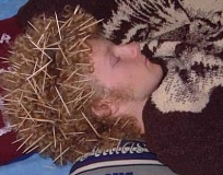 Funny Pictures of Guy Sleeping With Toothpicks In His Hair