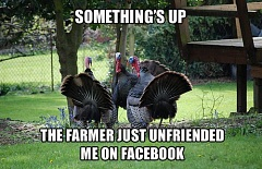 turkey facebook unfriended