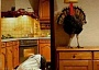 Funny Pictures of Thanksgiving Turkey Hiding Under Lamp