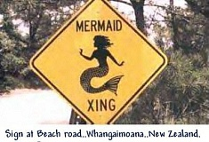 mermaidcrossing