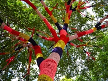 coffee-knitting-tree