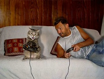 Funny Cat Pictures -  Playing Video Games