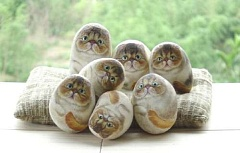 Funny Cat Pictures -  Hair Balls
