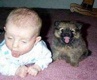 Funny Pictures of Baby Coughing After Dog Kiss