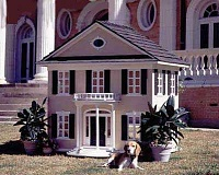 Funny Pictures of Dog House Mansion