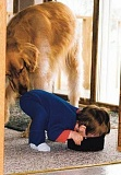 Funny Pictures of Dog Sniffing Child's Behind