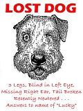Funny Jokes Picture of Lost Dog Poster